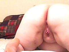 licking ssbbw ass and pussy