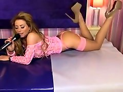 Lynda Leigh Pink Mesh Top With Stockings