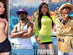 Venus Lux in Parking Lot Pimping - IKillItTs