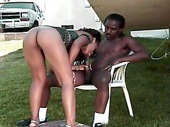 Black Beauty Sucking Big Black Dick