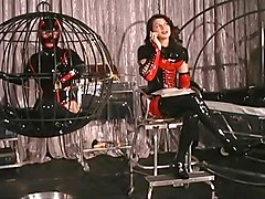 Lady Amanda Has Three Submissive Slaves