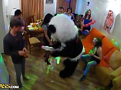 student party sex video with panda boy