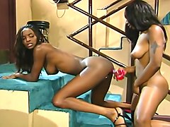 Black Sistas Strip Down And Lick Pussy Till She Cums