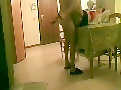 Fucking my aunt on table. Hidden cam