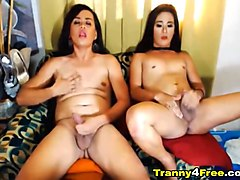 Two Horny Tranny Jerking Off on Cam