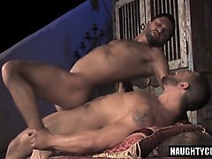 arab bear anal with anal cumshot