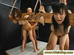 Two Asian Slaves Are Bound And Get Fucked Hardcore From Behind